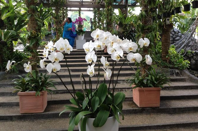 Kuala Lumpur Nature And Gardens Tour Include All Entrance photo 6