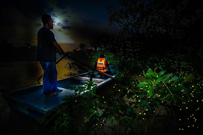 Kuala Selangor Firefly Tour Include Seafood Dinner And Boat Ride