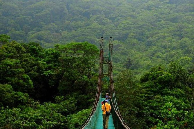 Monteverde Cloud Forest Suspension Bridges from Puntarenas