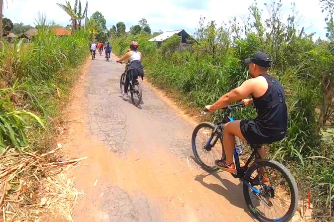 Downhill Cycling Kintamani to Ubud