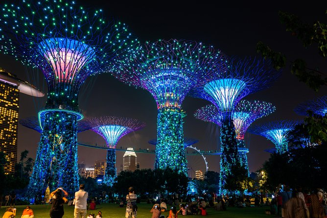 Gardens by the Bay with transfers