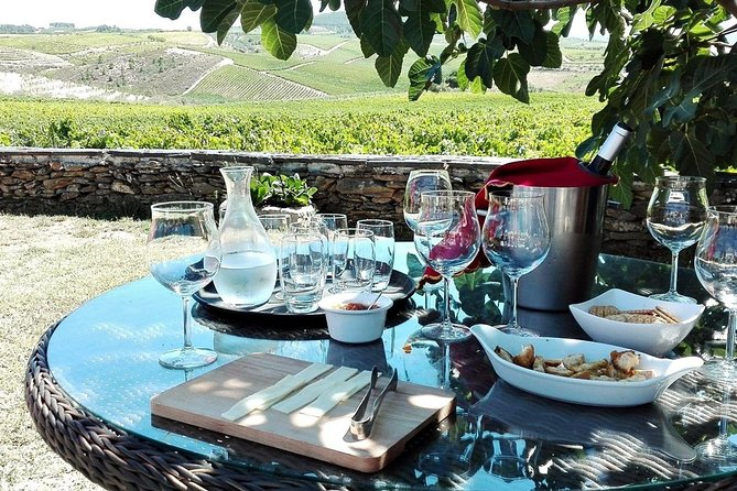 Douro Valley: Premium and Private Tour - All Included