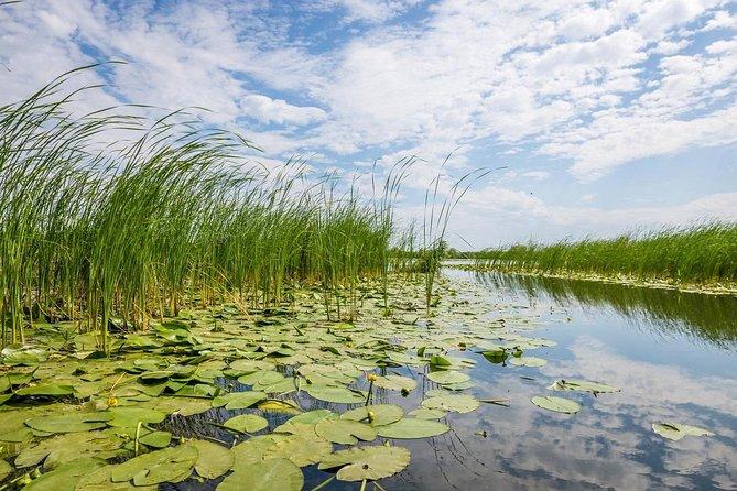 Danube Delta - 2-Days Shared Tour from Bucharest