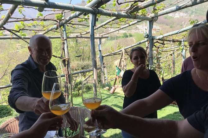 Amalfi Coast Cooking Class in Organic Farm