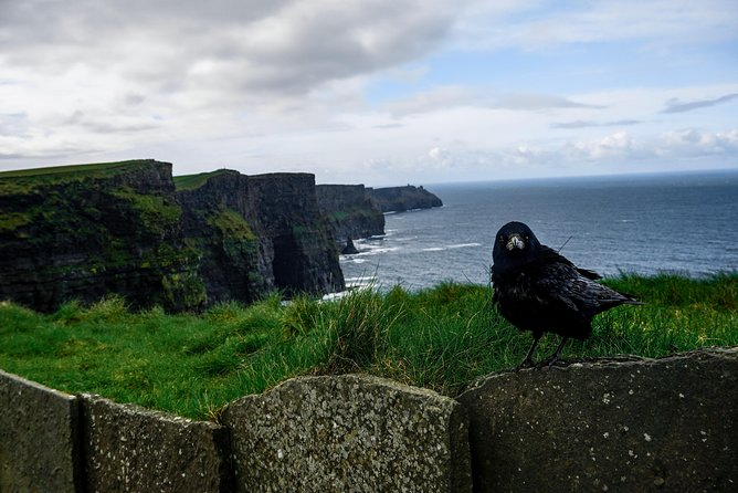 Cliffs of Moher - Exclusive Private Tour