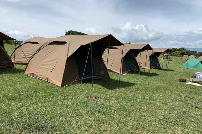 4-Day Camping Safari Including Serengeti & Ngorongoro photo 3