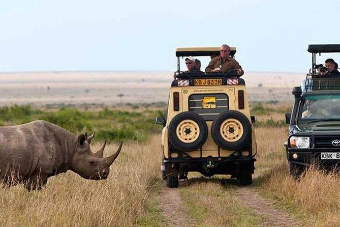 Nairobi National Park, Giraffe center & Kazuri beads factory Guided Day Tour