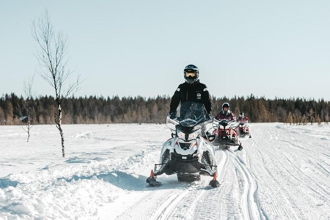 Snowmobile Safari to Wilderness from Levi