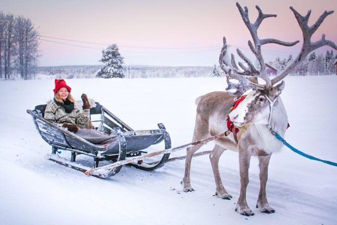 Vip Trip to Reindeer Farm with private guide by Lux car