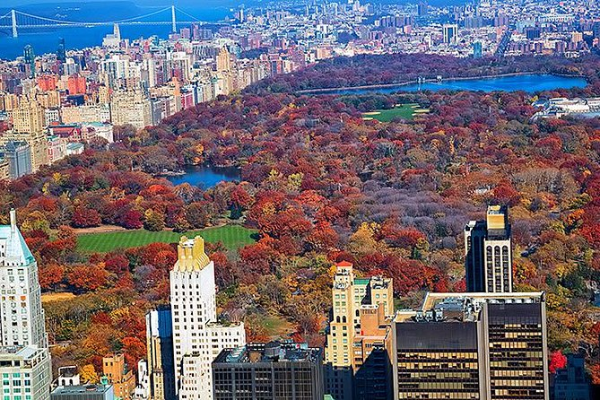 New York Tour by Subway and Bus with Private Guide