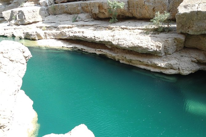 Off-road driving and swimming at the wild Wadi Arbeen photo 7