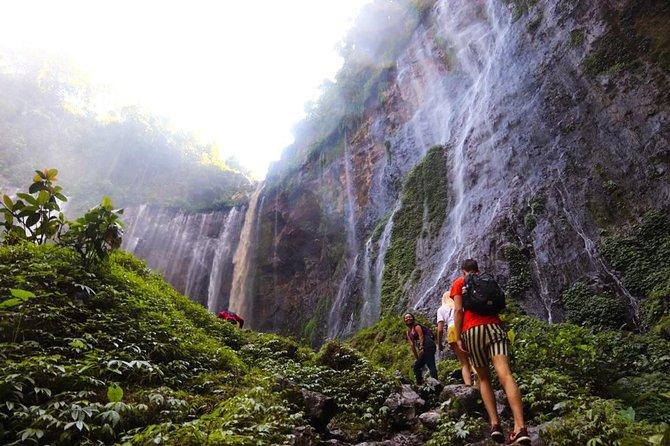 1Day - Coban Sewu Waterfall and Goa Tetes Trekking
