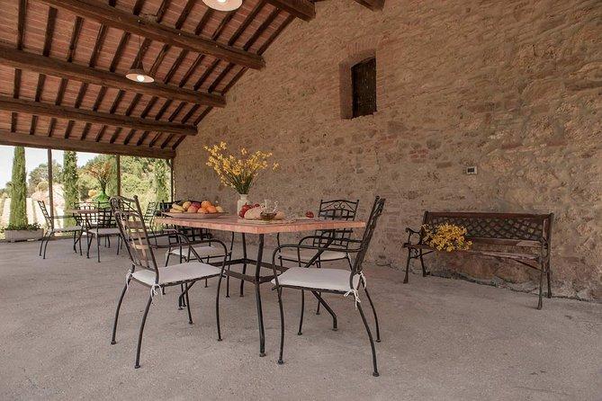Wine tasting experience in the Vallorsi farm close to Pisa and Livorno