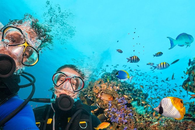 Kemer Scuba Diving with transfer from Antalya