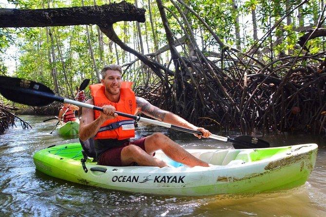 Mangrove Kayak and Local Waterfall Experience