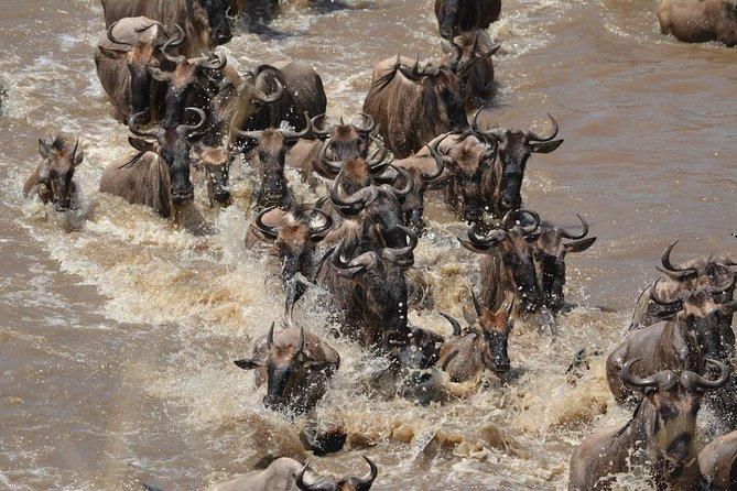 3 Days Africa Luxury Safaris