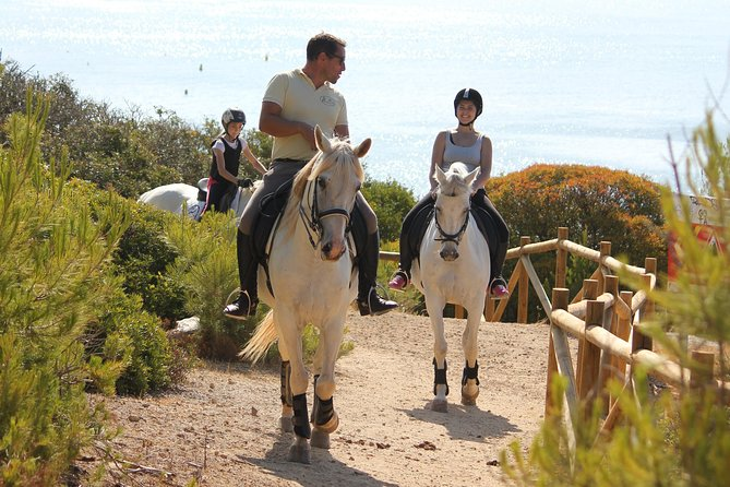 Algarve - Exclusive horseriding in Portimao (no experience required)