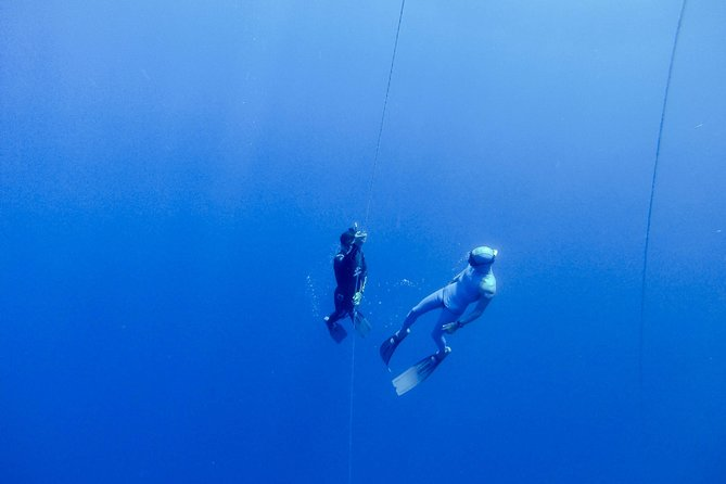 Apnea Total Freediver Course