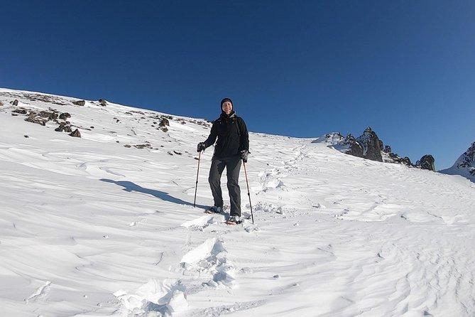 Beginner's Snowshoeing Adventure