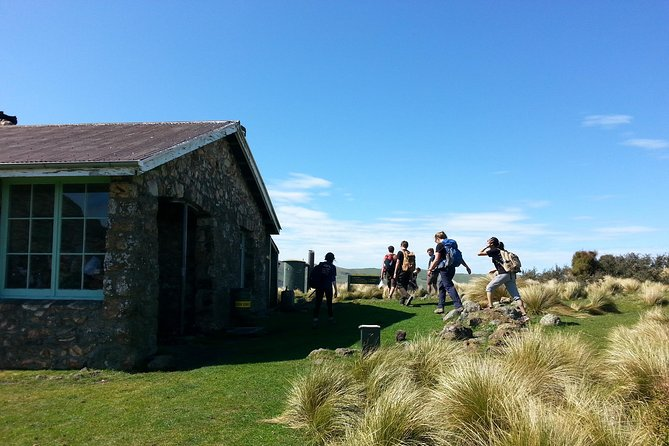 Packhorse Hut guided day walk & senic drive photo 10