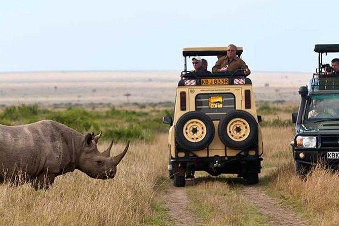 Nairobi National park, Elephant Orphanage & Bomas of Kenya Guided Day Tour