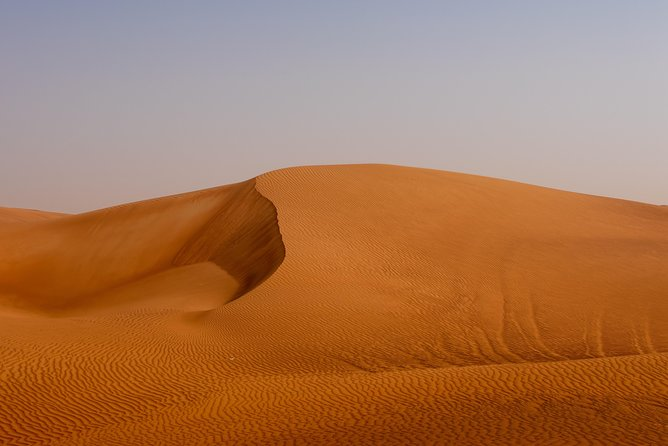 Miracle Morning Safari in the arabic desert including Sandboarding and Camelride photo 12