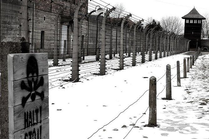 From Krakow: Auschwitz-Birkenau Regular Tour with Private Chauffeur