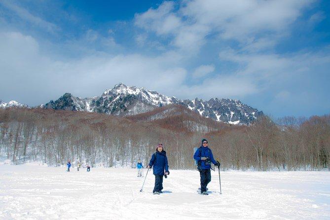 Nagano Snowshoe Hiking Tour