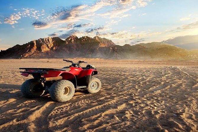 Sharm El Sheikh Desert Safari Bike & Camel Rides