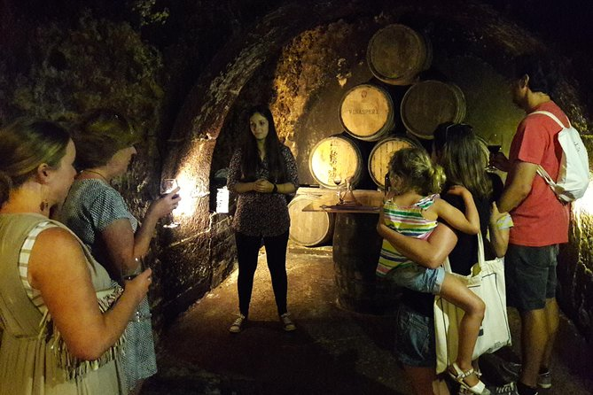 La Rioja Private Wine Tour with Wine Tasting and Lunch
