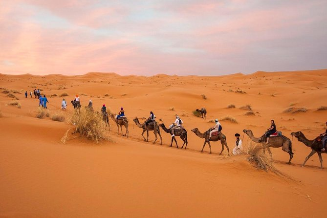 3-Day Tour From Marrakech To Fes Via The Desert
