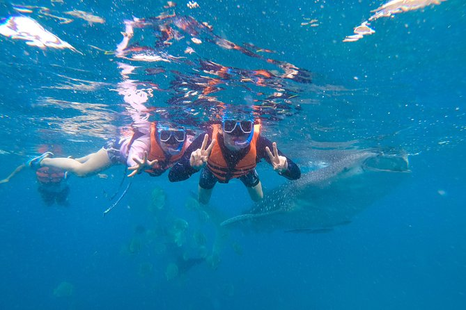 Whale Shark Encounter and Tumalog Falls Tour including Use of GoPro photo 7