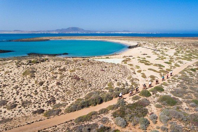 E-Bike + Lobos island