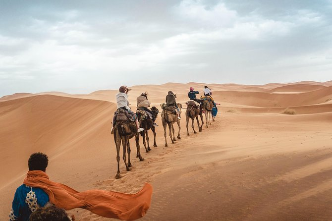 Fez to Fez desert tour [2 days and 1 night]