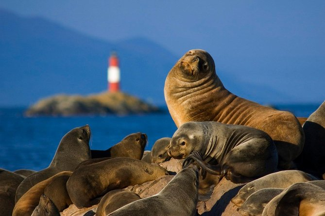 Navigation Beagle Channel Isla de Lobos