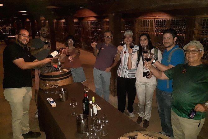 Viña Santa Rita Classic Tour departure from Santiago (half day)