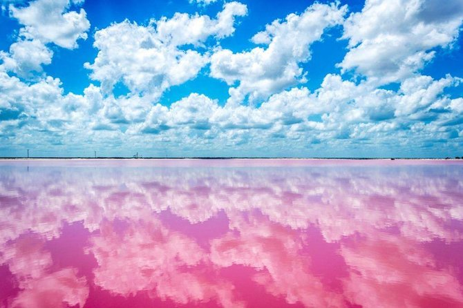 Must-See: Your Private Pink Lake, Rio Lagartos, Ek Balam Tour for up to 4 people