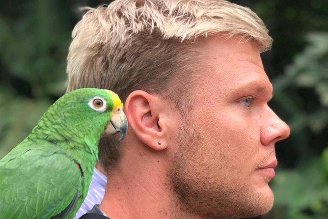 Bird watching tour departing from Bogota. (2 days)