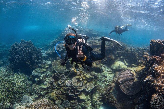 Guided Ningaloo Reef Manta-Ray Sightseeing Diving Experience