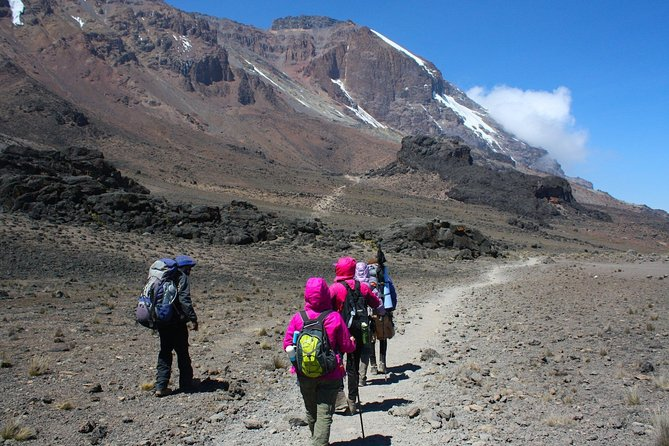 6 Days Marangu Route photo 4