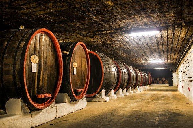 Biggest winery trip