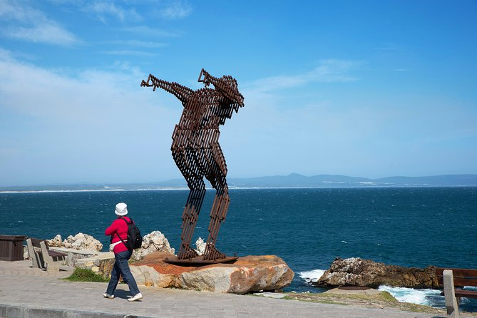 Full Day Hermanus and Winelands Tour