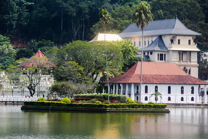 Kandy Day Tour from Colombo or Negombo by Private Car or Van with Driver