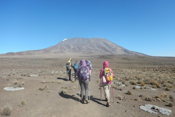 Climbing Mt. Kilimanjaro using Machame Route photo 4