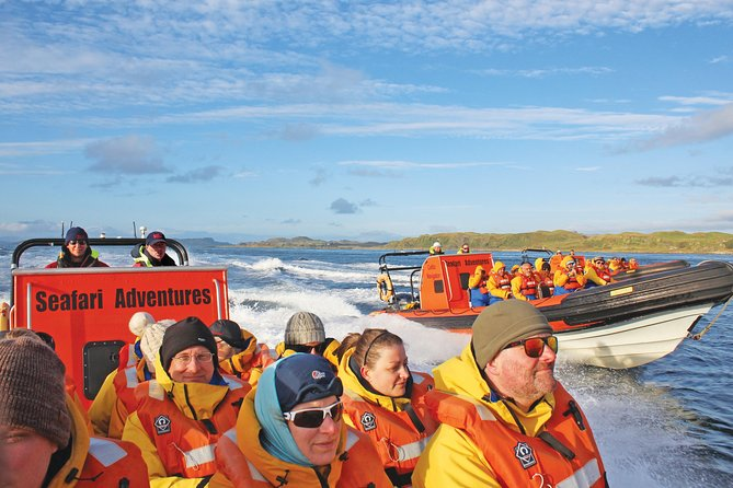 Marine Wildlife Tour through Gulf of Corryvreckan