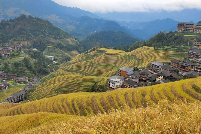 Guilin Tea plantation and Longji Rice Terraces Day Tour from Guilin hotel