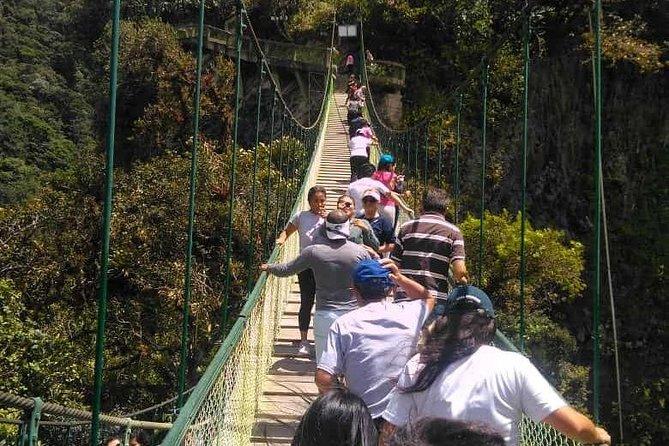 Jungle Excursion - Amazonia - Chocolate Factory - Indichuris - Boating