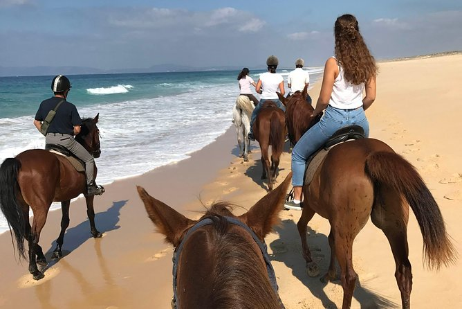 Horse Riding Tour on the Beach Lisbon region photo 15