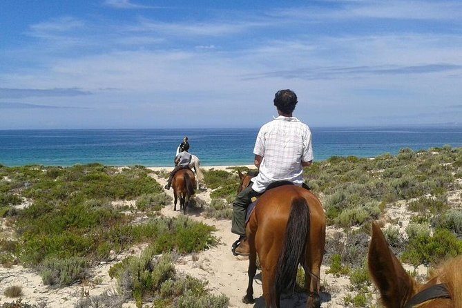 Horse Riding Tour on the Beach Lisbon region photo 13