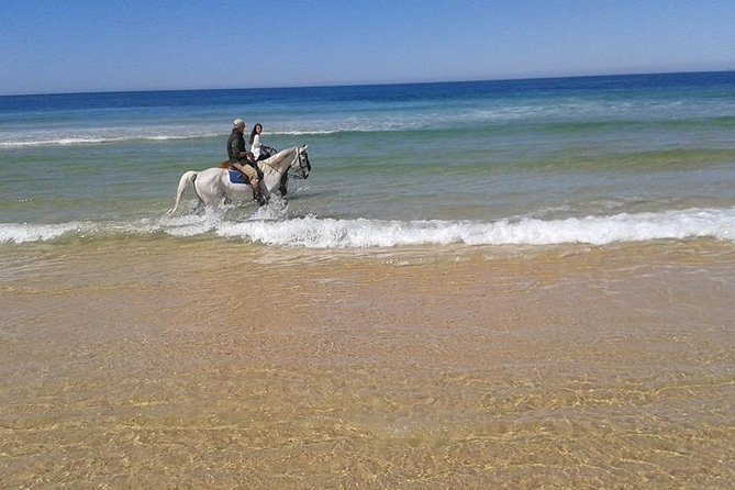 Horse Riding Tour on the Beach Lisbon region photo 3
